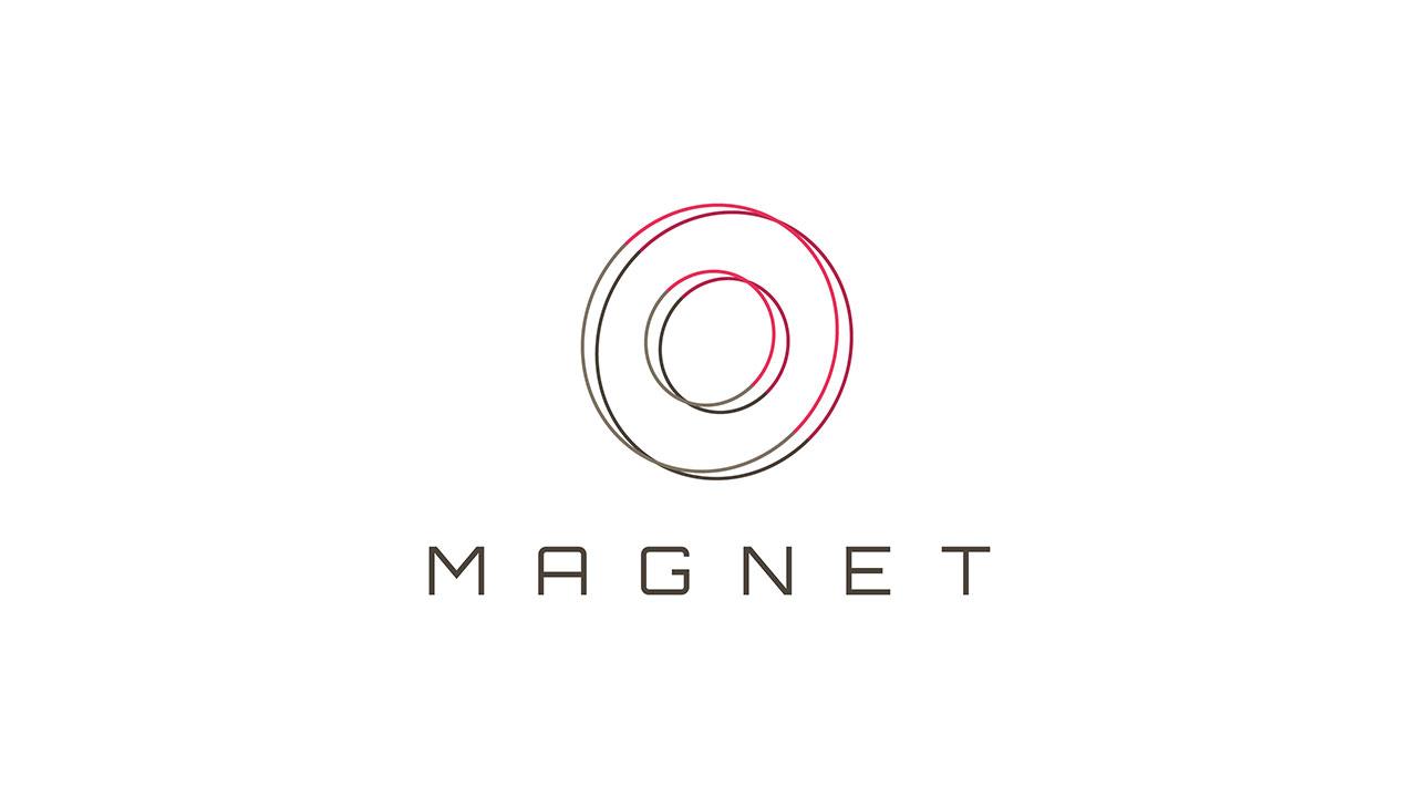 Magnet Brand Identity